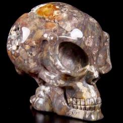 Skulls (163)