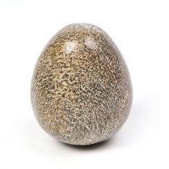 Eggs (19)