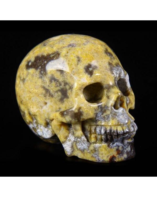 Blue Ocean Agate Skull