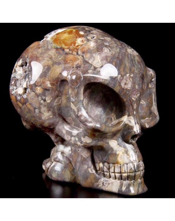 Dinosaur  Egg Agate Alien Skull