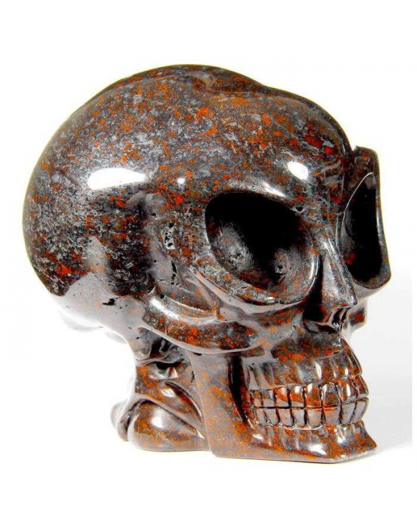 Chicken Blood Stone Alien Skull