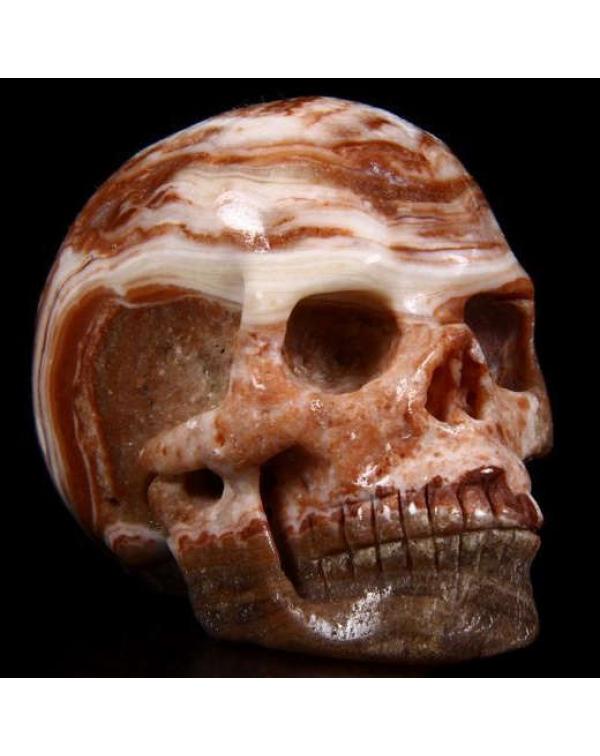 Eastern Jasper Skull
