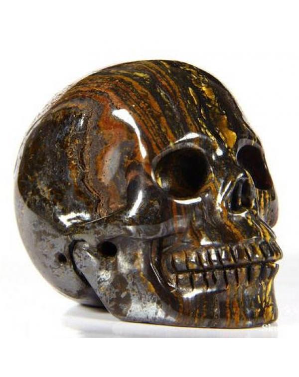 Tiger Iron Eye Skull
