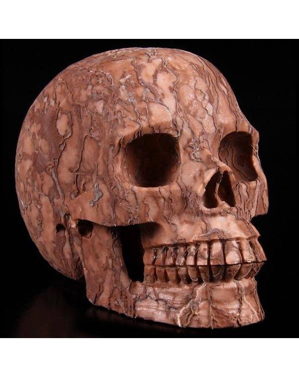 3D Art Jasper Skull