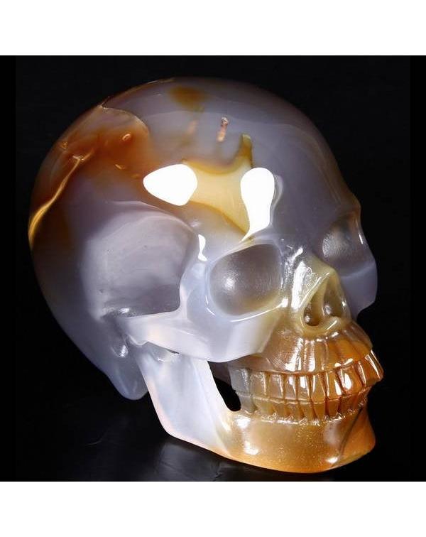 Cornelian Skull
