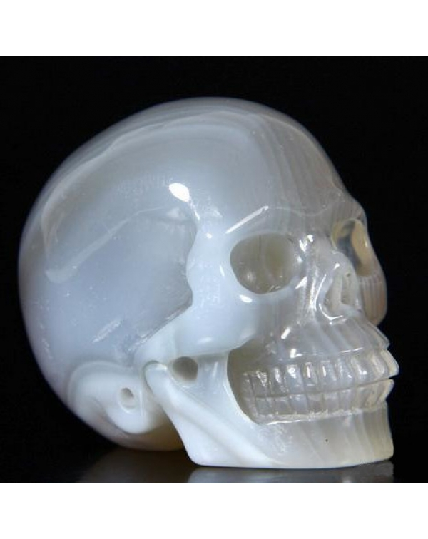 Grey & White Agate Skull