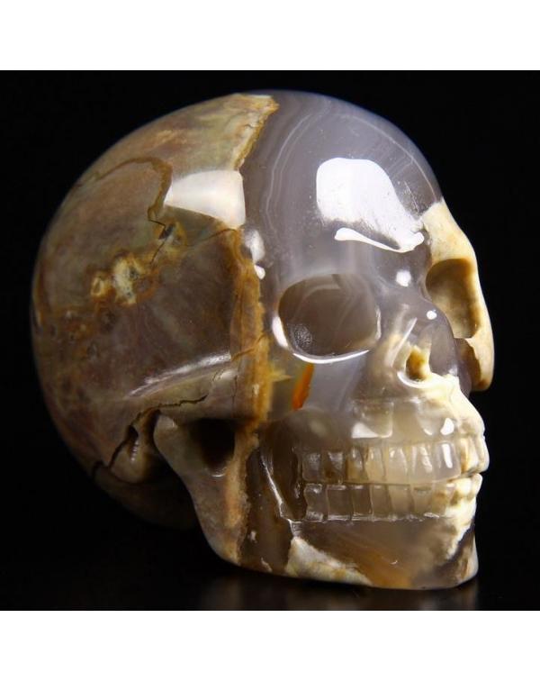 Dinosaur Egg Agate Skull