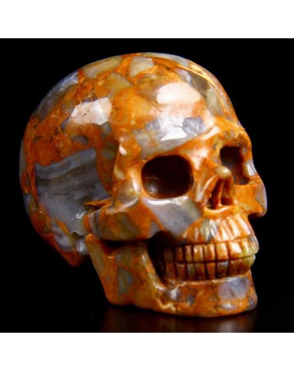 Nihewan Agate Skull