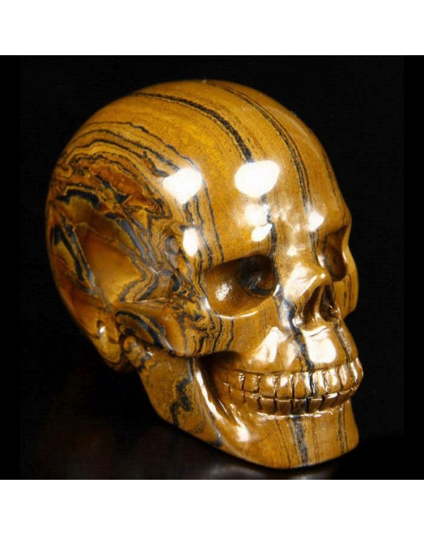 Tiger Iron Eye Skull