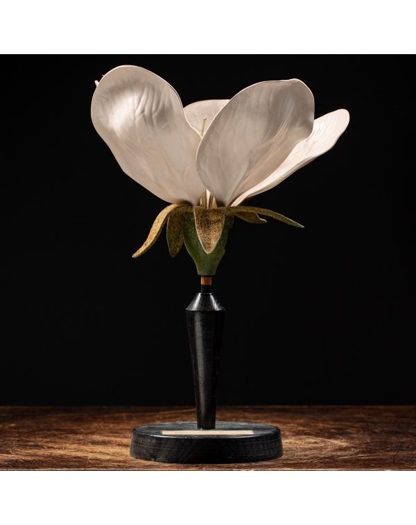 Antique Anatomical Flower Model - Pyrus Communis