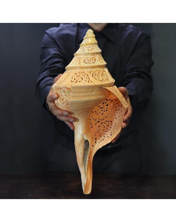 Giant Carved Syrinx Aruanus