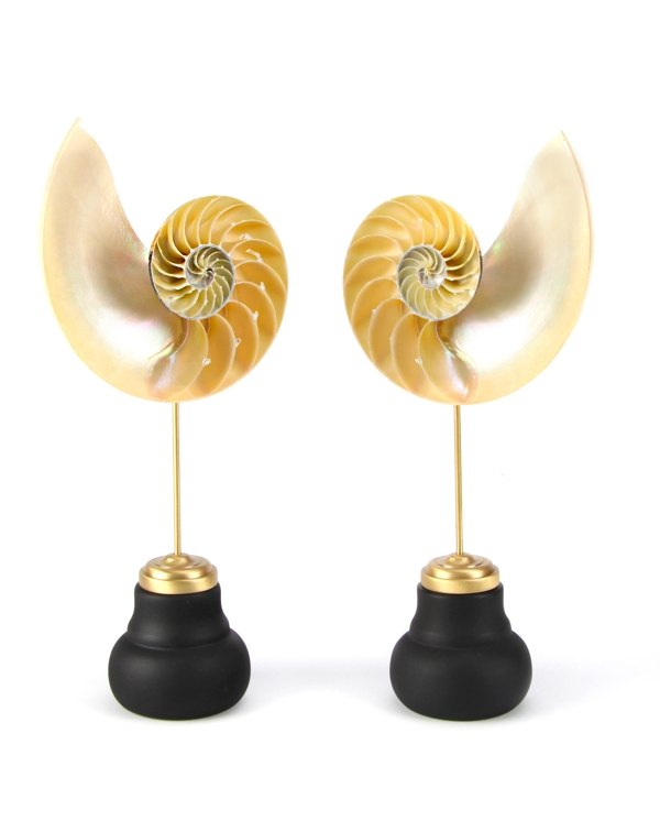 Nautilus Pompilius Mother of Pearl on Pedestal