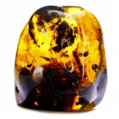 Baltic Amber (3)
