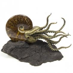 Ammonites Sculpture (7)