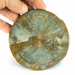 Pyrite Sun (1)