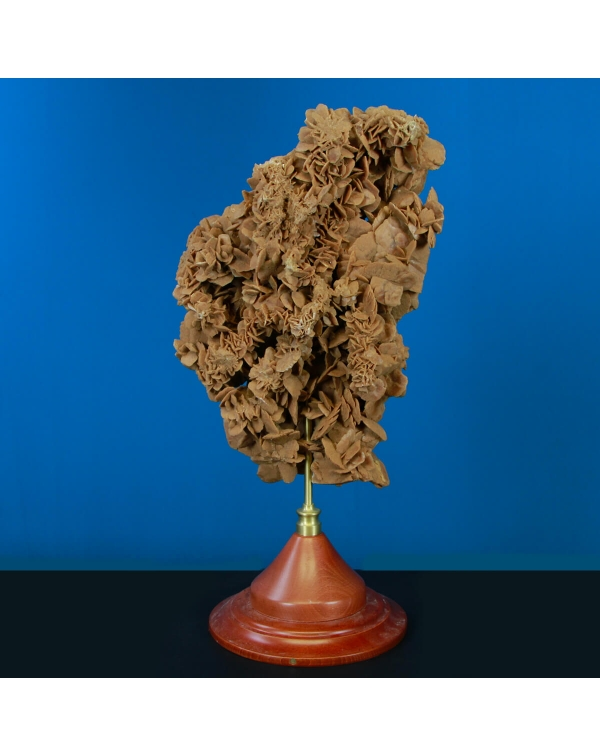 Desert Rose on Pedestal