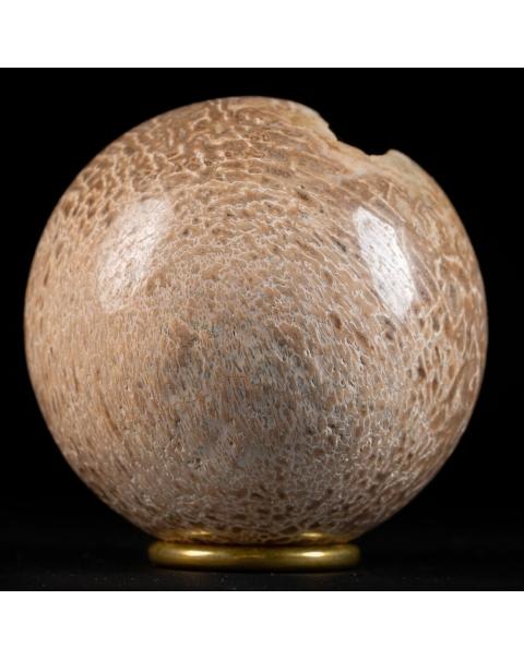 Sphere made from Atlasaurus Bone