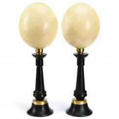 Ostrich eggs (9)