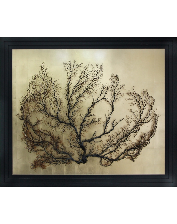 Gorgonian Golden Painting